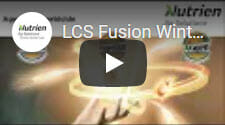 LCS Fusion Winter Wheat