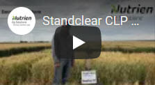 Standclear Winter Wheat